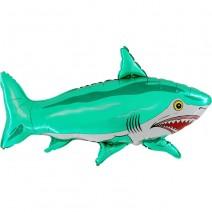 בלון מיילר כריש ירוק
