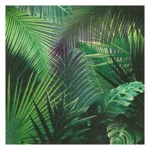 מפיות גדולות Jungle Fever