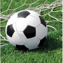 מפיות גדולות כדורגל במגרש