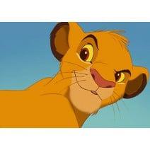 תמונה אכילה מלך האריות 9