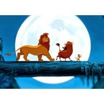 תמונה אכילה מלך האריות 10
