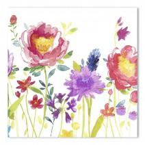 מפיות גדולות Anmut Flowers