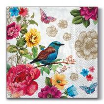 מפיות גדולות ציפור גן עדן