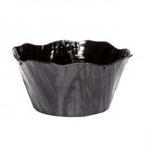 מרקיות ג'ינג'ר שחור