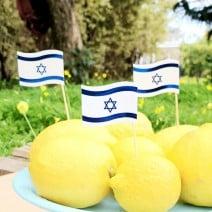טופרים דגל ישראל