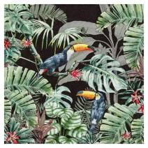 מפיות גדולות Jungle Toucans