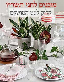 סטים מושלמים לשולחן החג